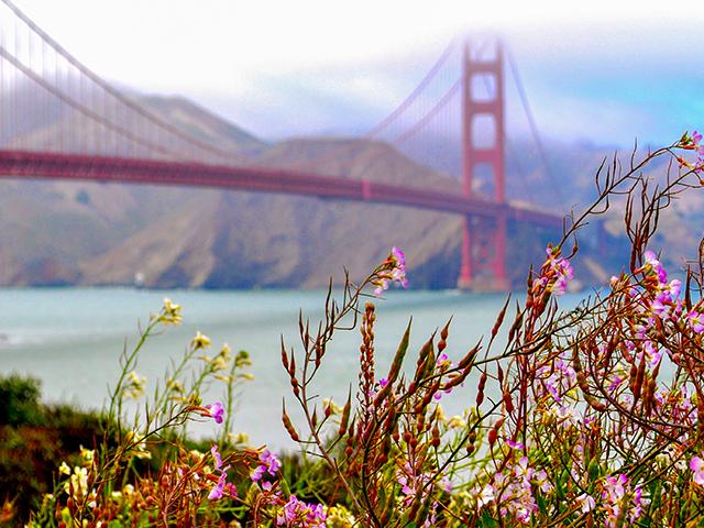 20150508112856_golden-gate-bridge-4-foto-anneloes-keunenamerika-only
