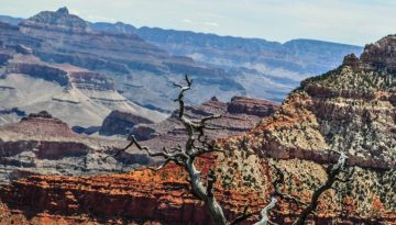 20160226155803_grand-canyon-national-park-amerika-onlyanneloes-keunen