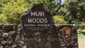 20160318124932_muir-woods-national-monument-californie-visit-californiacarol-highsmith