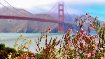 20170302172735_golden-gate-bridge-4-amerika-onlyanneloes-keunen