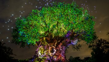 Disney's Animal Kingdom Aglow in Celebration of Pandora – The World of Avatar