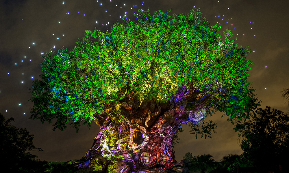 Disney's Animal Kingdom Aglow in Celebration of Pandora – The World of Avatar