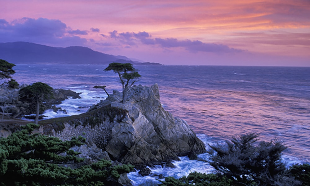 Home amerika only for 17 mile drive celebrity homes