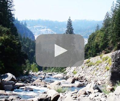 Yosemite National Park - Sophie Bel via Facebook