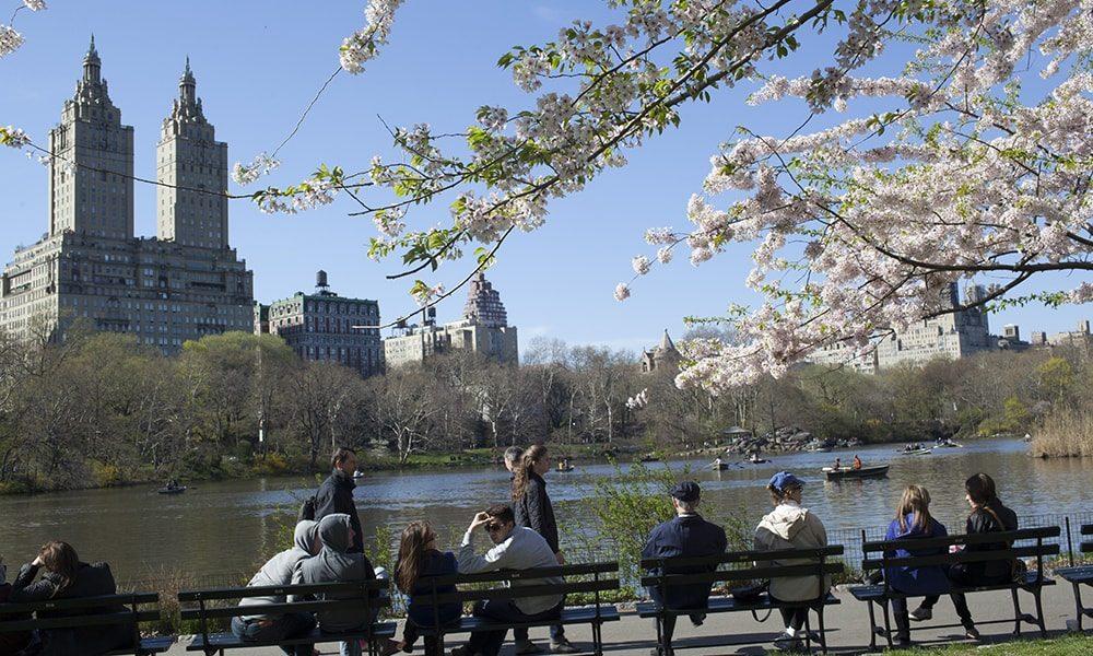 Central Park 6 - Jen Davis via NYC & Company