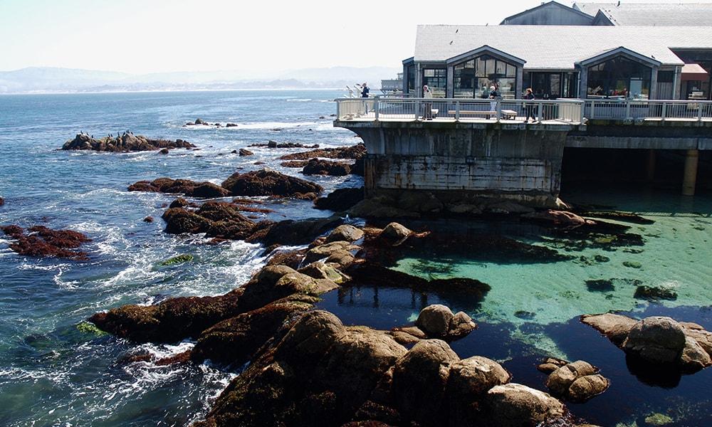 Monterey Bay Aquarium - Blaise via Visit California