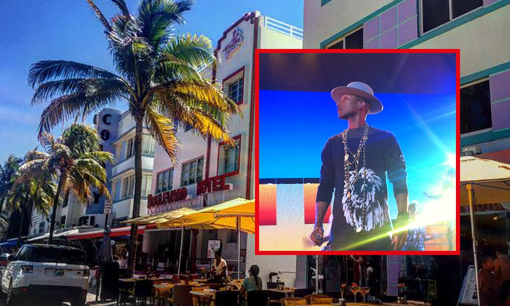 Miami Pharrell - Anneloes Keunen via Amerika Only