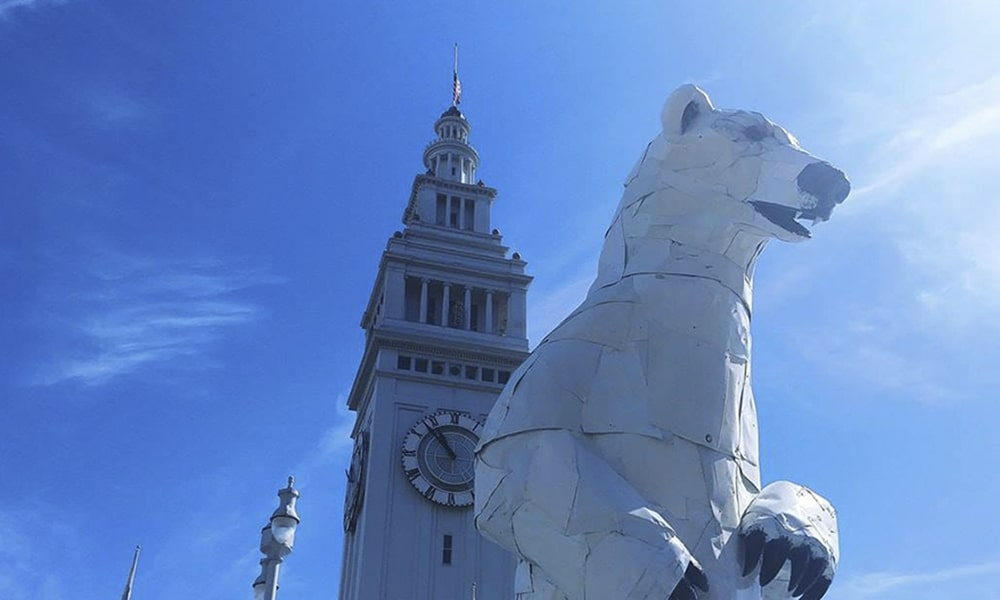 Long View Polar Bear - Kevin Lux via Leven In SF
