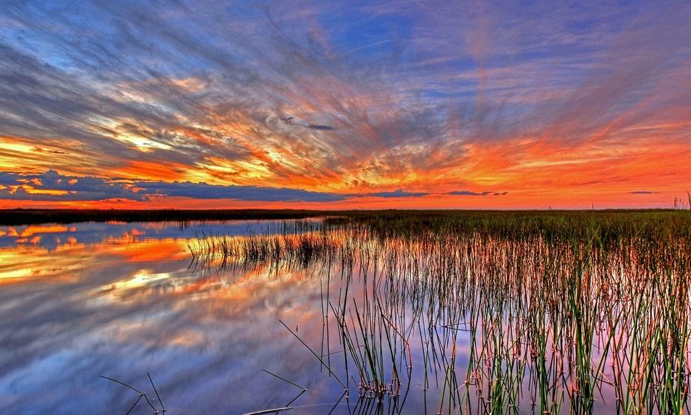 Everglades National Park - Pixabay