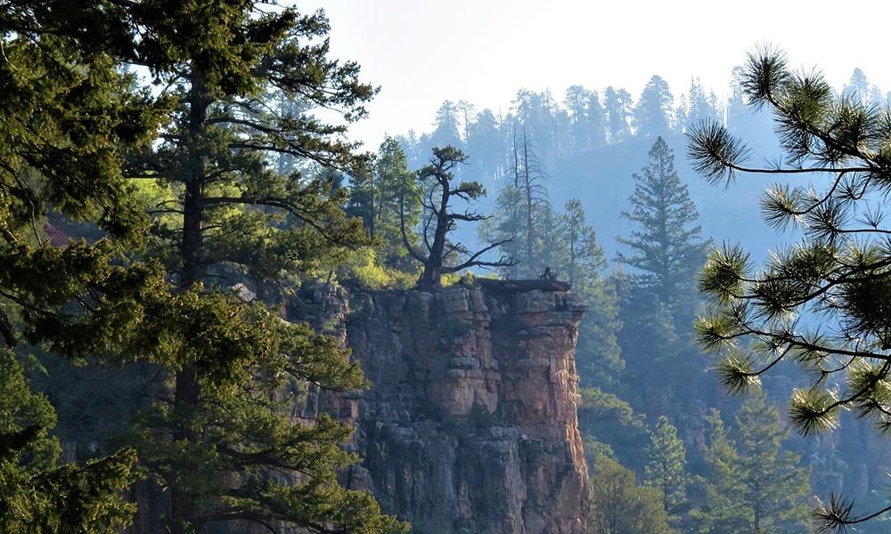 Amerikaanse nationale parken
