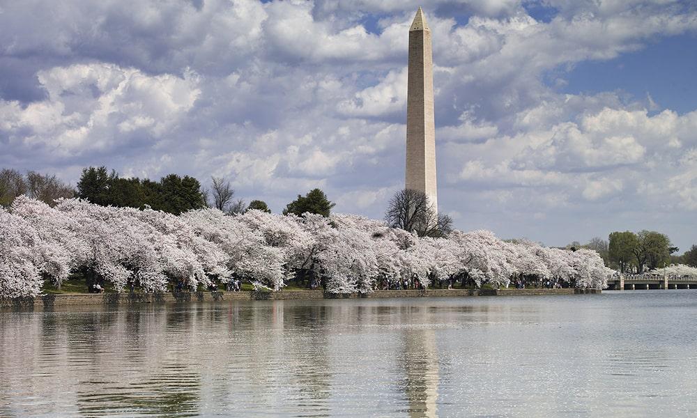 Washington - Pixabay