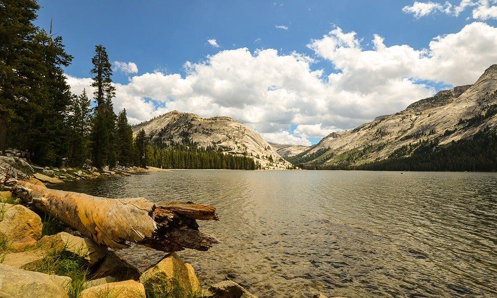 Yosemite National Park - Pixabay
