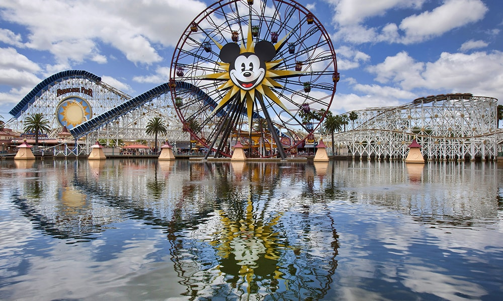 Disneyland entree