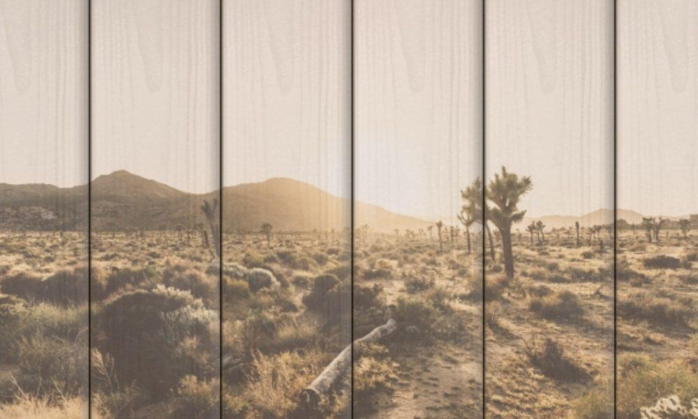 Joshua Tree National Park op hout (60 x 40 cm)