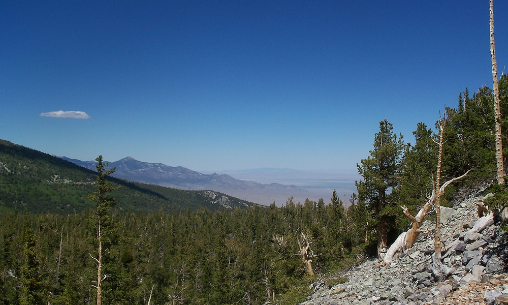 Great Basin National Park - TravelNevada