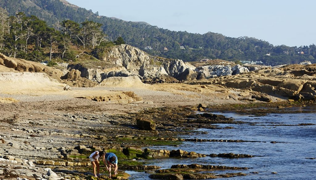 Carmel By The Sea - Chris Leschinsky via Visit California