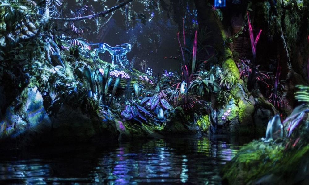 Disney's Animal Kingdom 2 - David Roark via WDW News