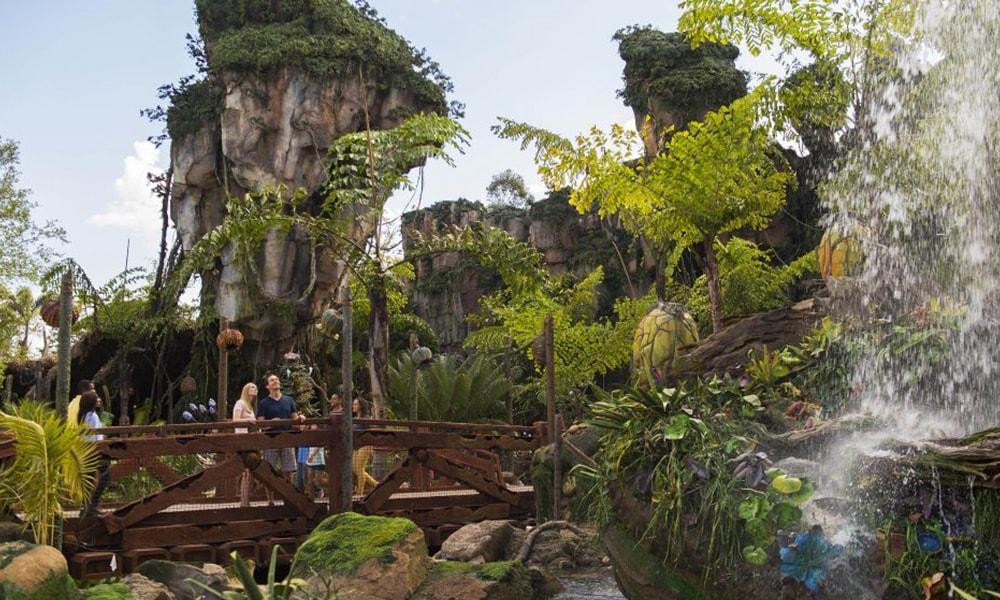 Disney's Animal Kingdom - Steven Diaz via WDW News