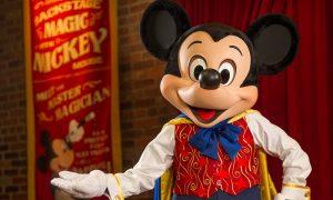 Disney World - Ali Nasser