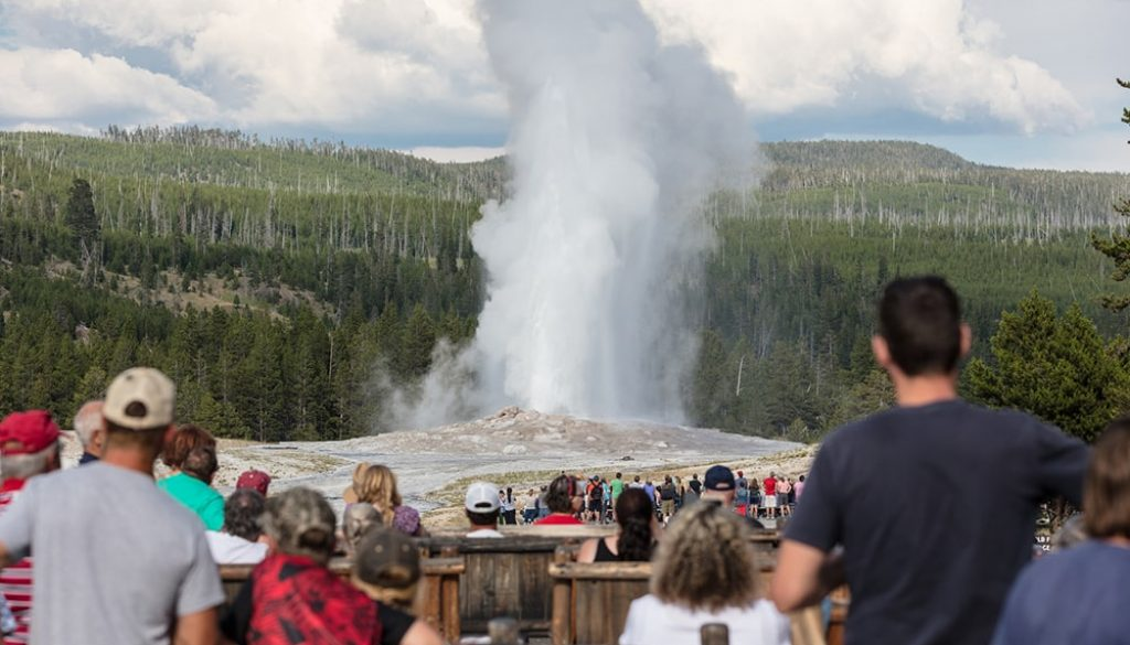 Yellowstone National Park 6