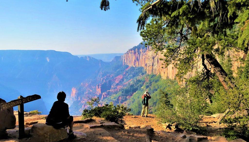 Grand Canyon National Park 2 - Pixabay