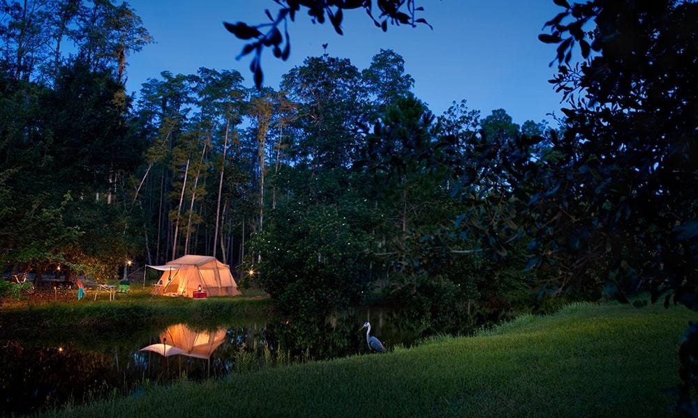 Disney's Fort Wilderness Resort & Campground - Disney-min
