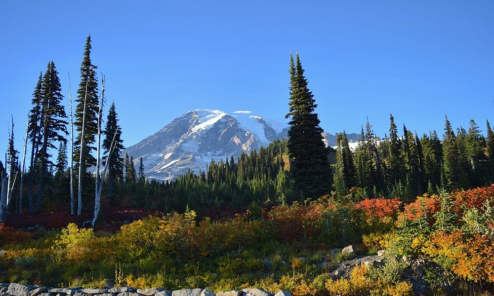 Mount Rainier National Park - Pixabay