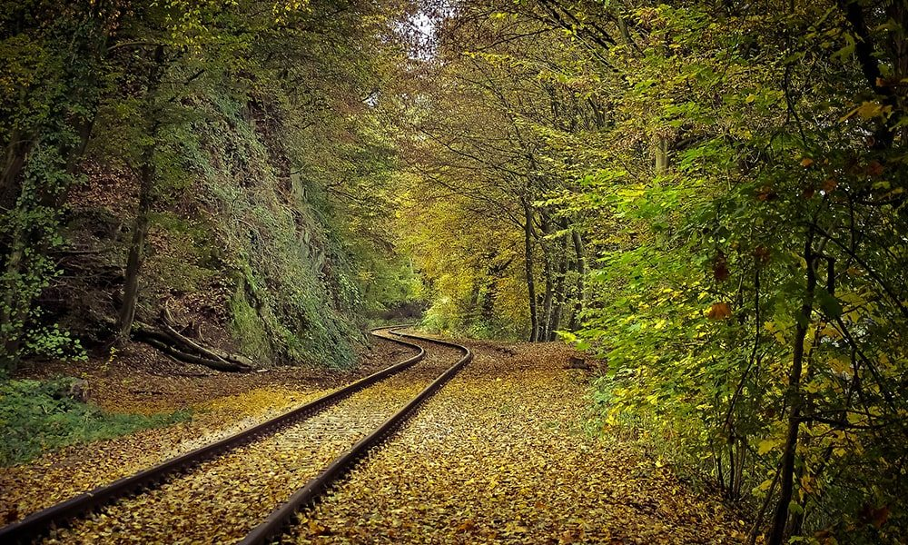 Herfst - Pixabay-min