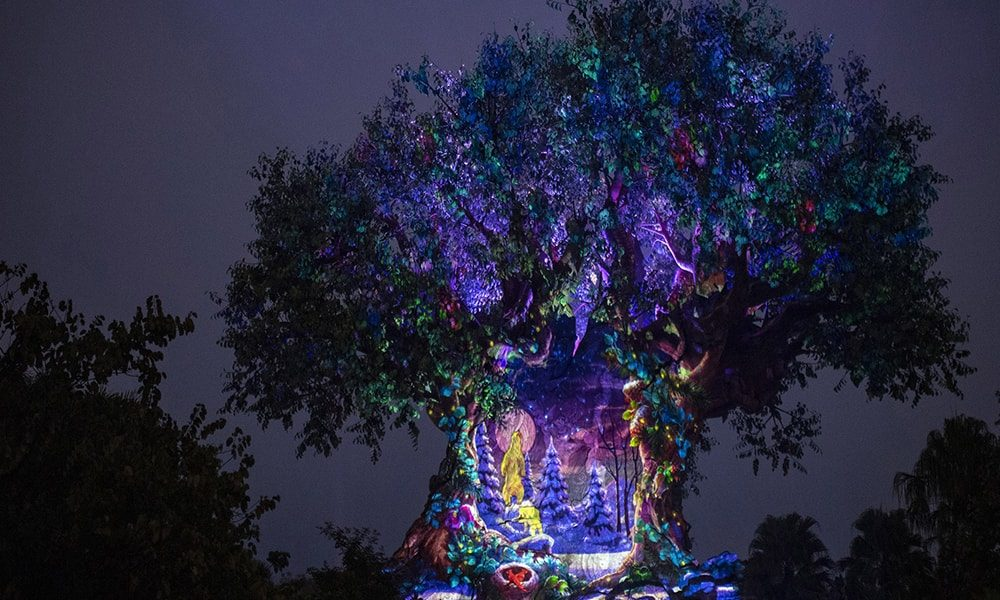 Disney's Animal Kingdom - Matt Stroshane via WDW News-minDisney's Animal Kingdom - Matt Stroshane via WDW News-min