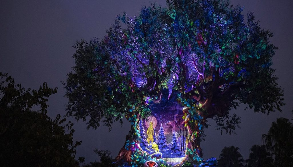 Disney's Animal Kingdom - Matt Stroshane via WDW News-minDisney's Animal Kingdom - Matt Stroshane via WDW News-min