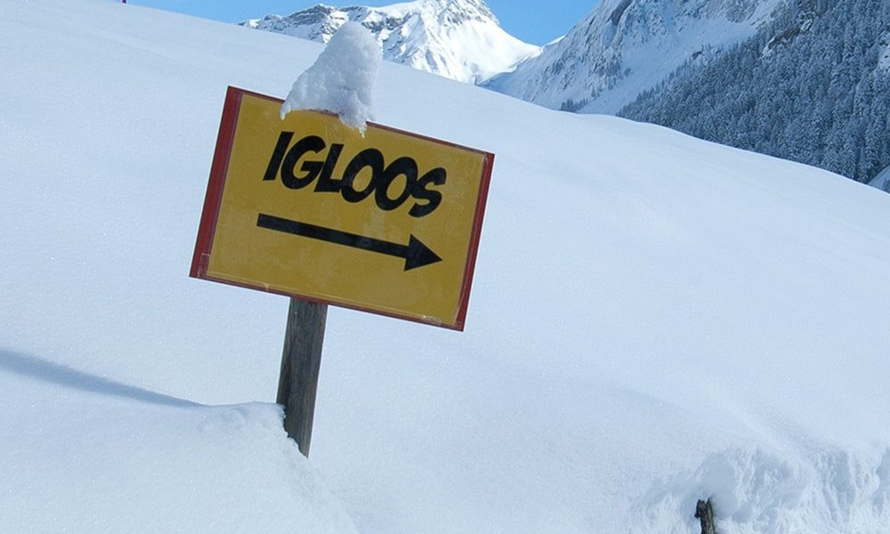 Iglo's - Pixabay-min