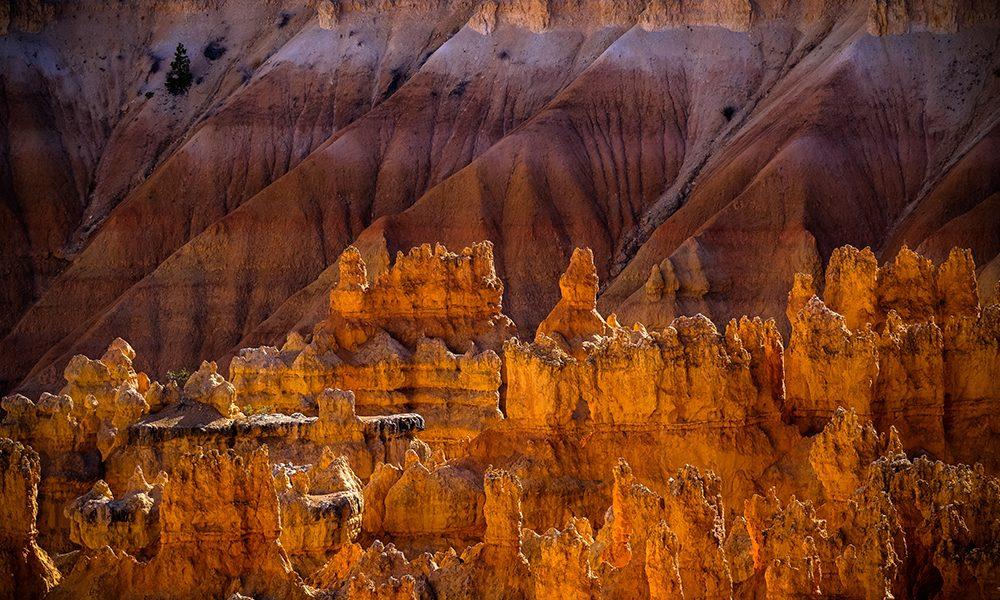 Bryce Canyon National Park - UnsplashBryce Canyon National Park - Unsplash