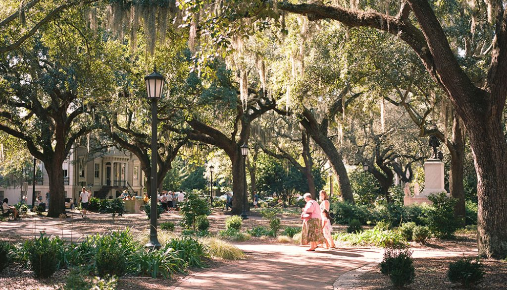 Savannah - Unsplash
