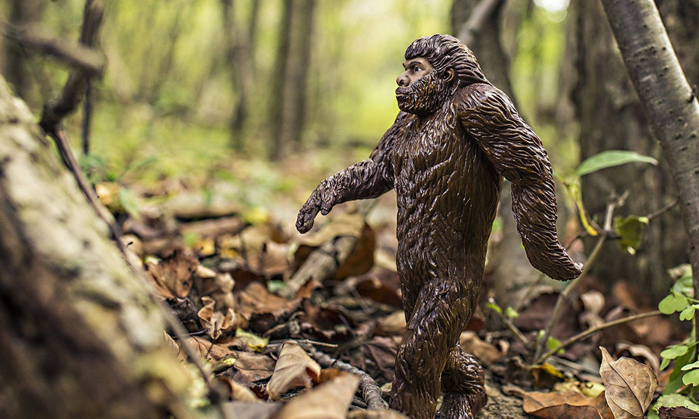 Bigfoot - Pixabay