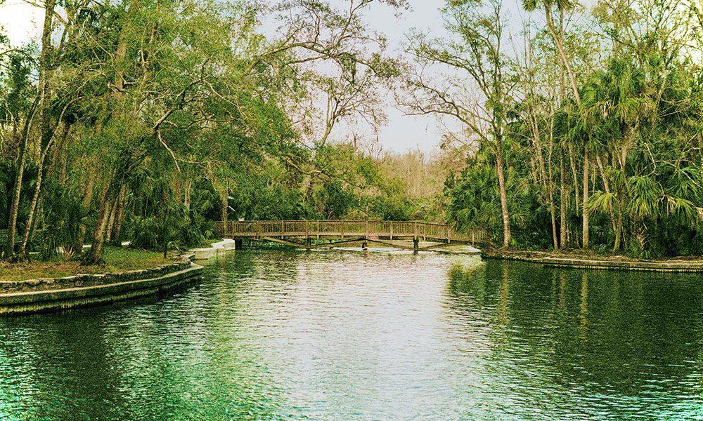 Wekiwa Springs - Unsplash