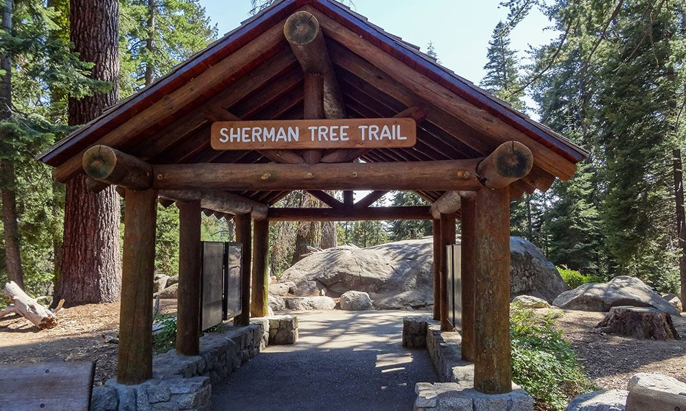 Sequoia National Park - Unsplash