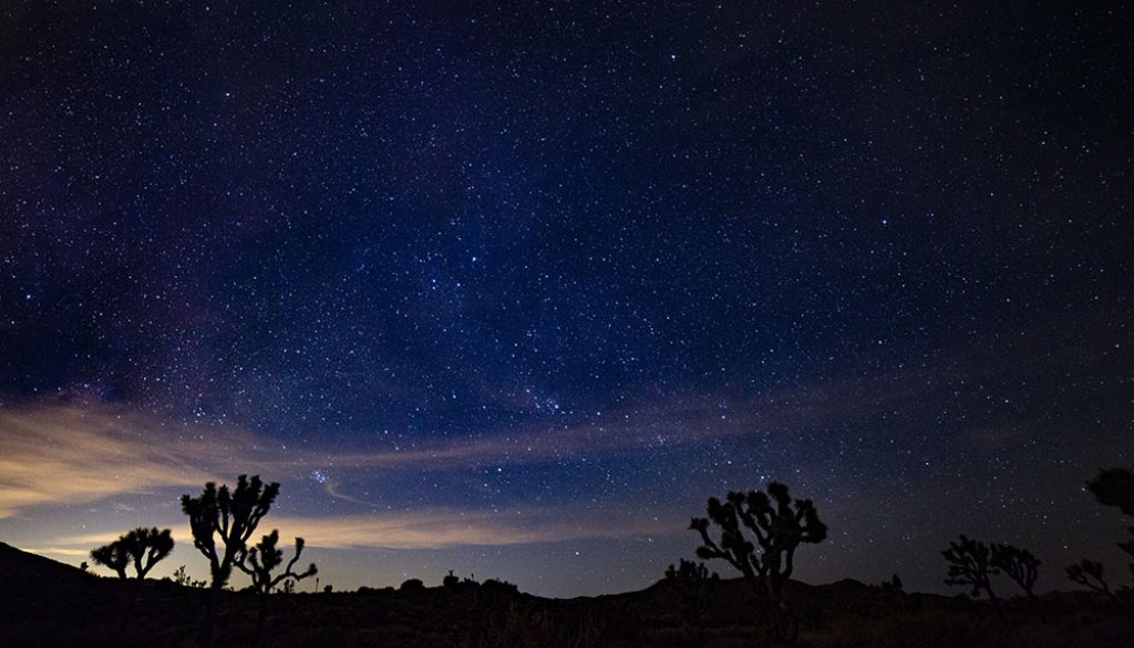Mojave Desert - Unsplash