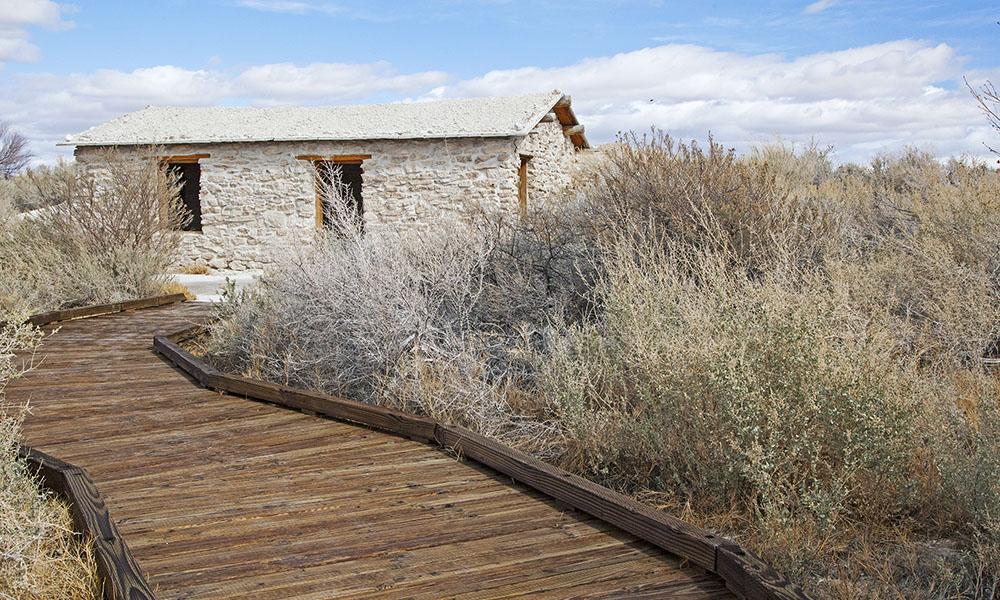 Ash Meadows - Sydney Martinez via Travel Nevada