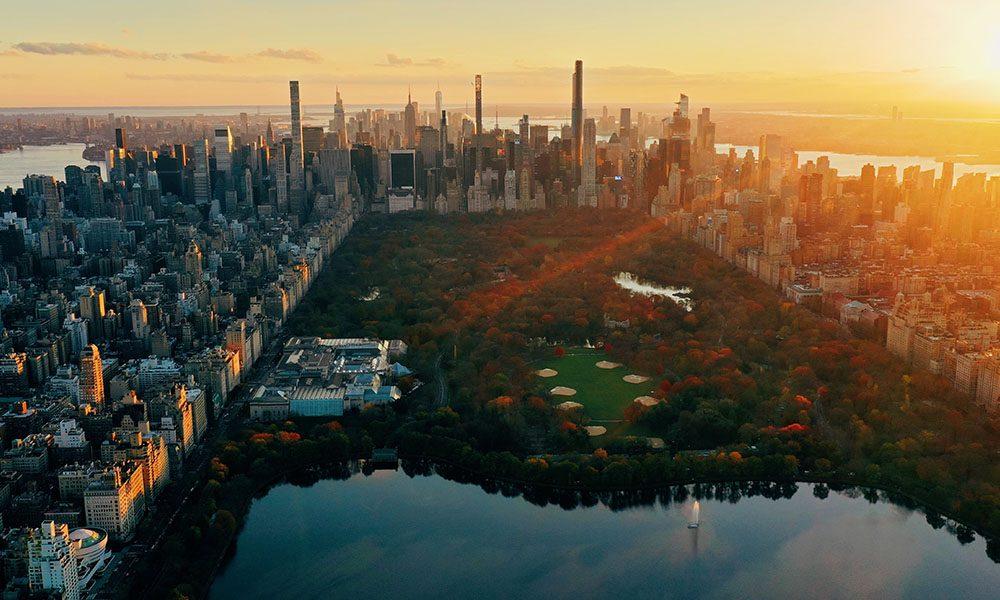 Central Park - Unsplash