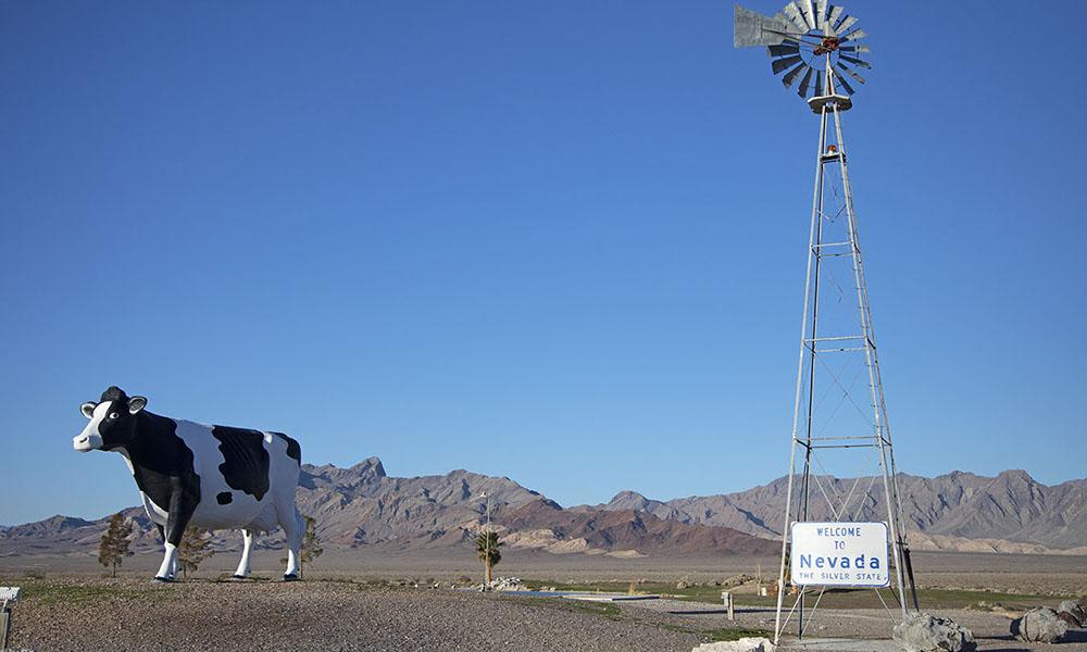 Longstreet Inn & Casino 3 - Sydney Martinez via Travel Nevada