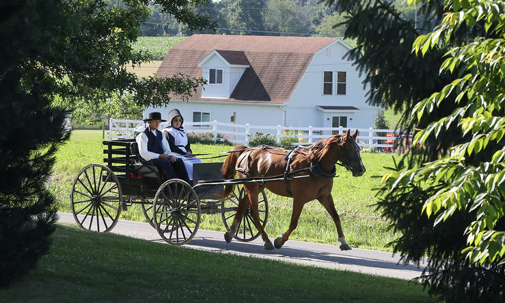 Amish Country - Unsplash